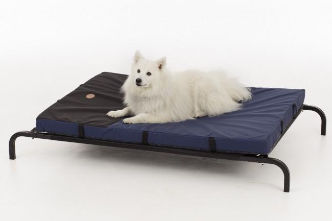 lit de camp chien